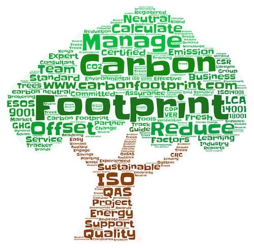 opinion essay carbon footprint europrofit line pl opinion essay carbon footprint