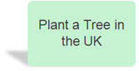 Plant a tree in your region of the UK