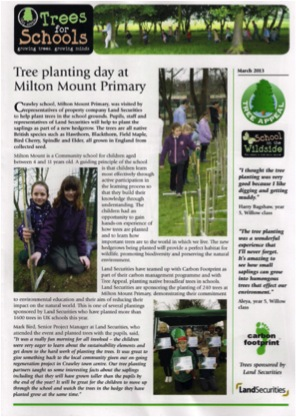 tree_planting_newsletter.jpg