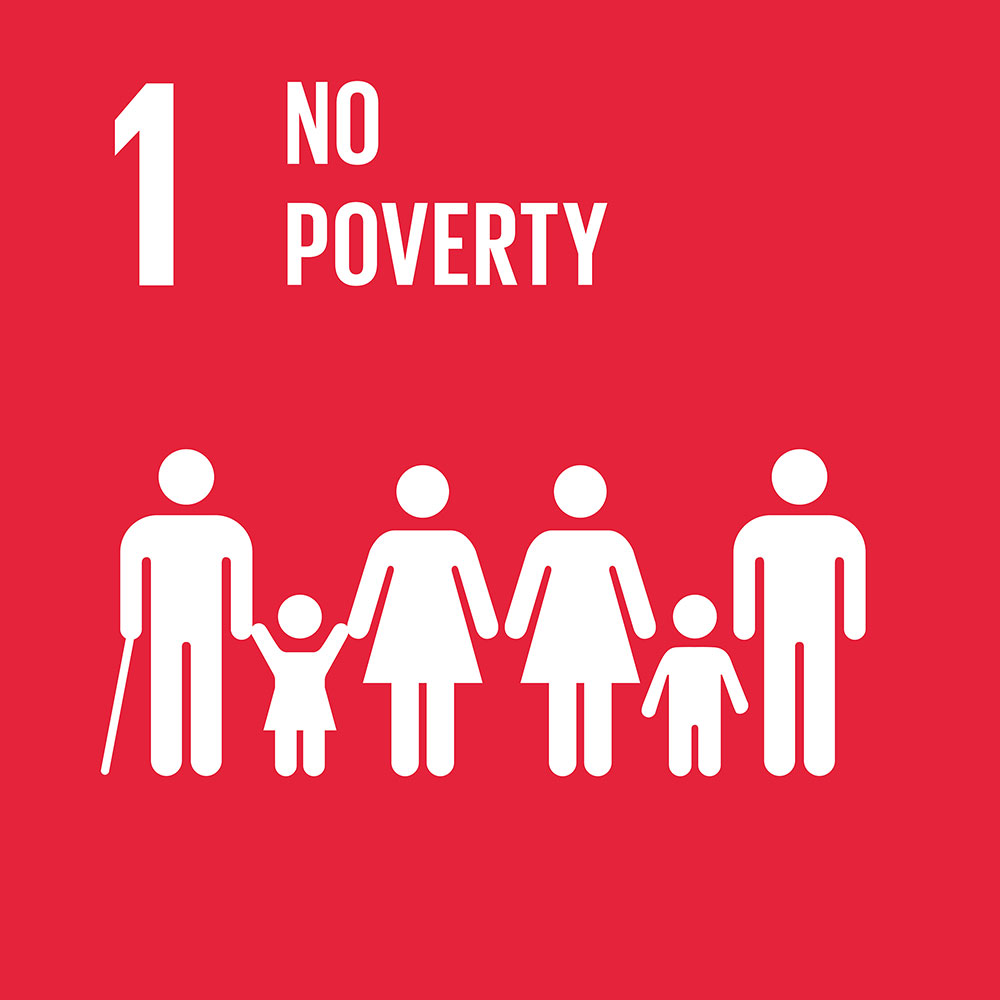 un_no_poverty_icon.jpg